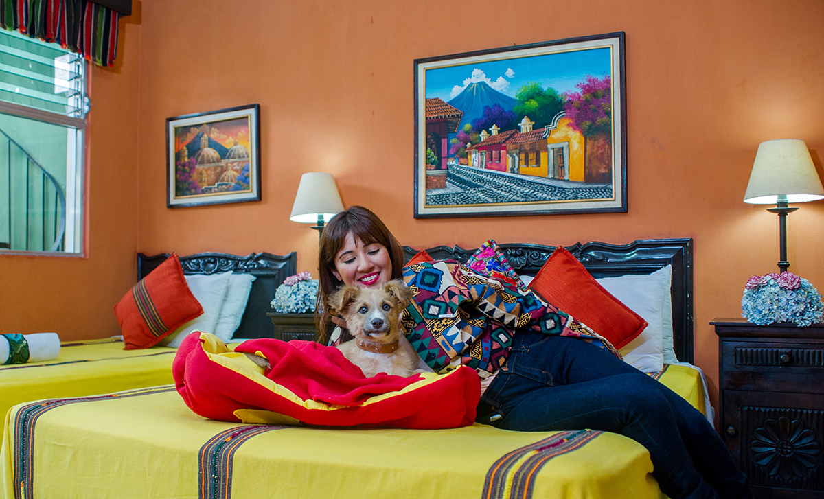 Pet friendly hotel in Antigua Guatemala